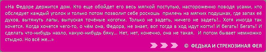 StrekoFey-